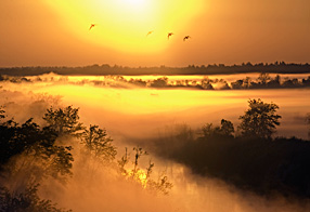 Mist over the Kasari river at sunrise, Kloostri, Matsalu National Park, Estonia, May 2009