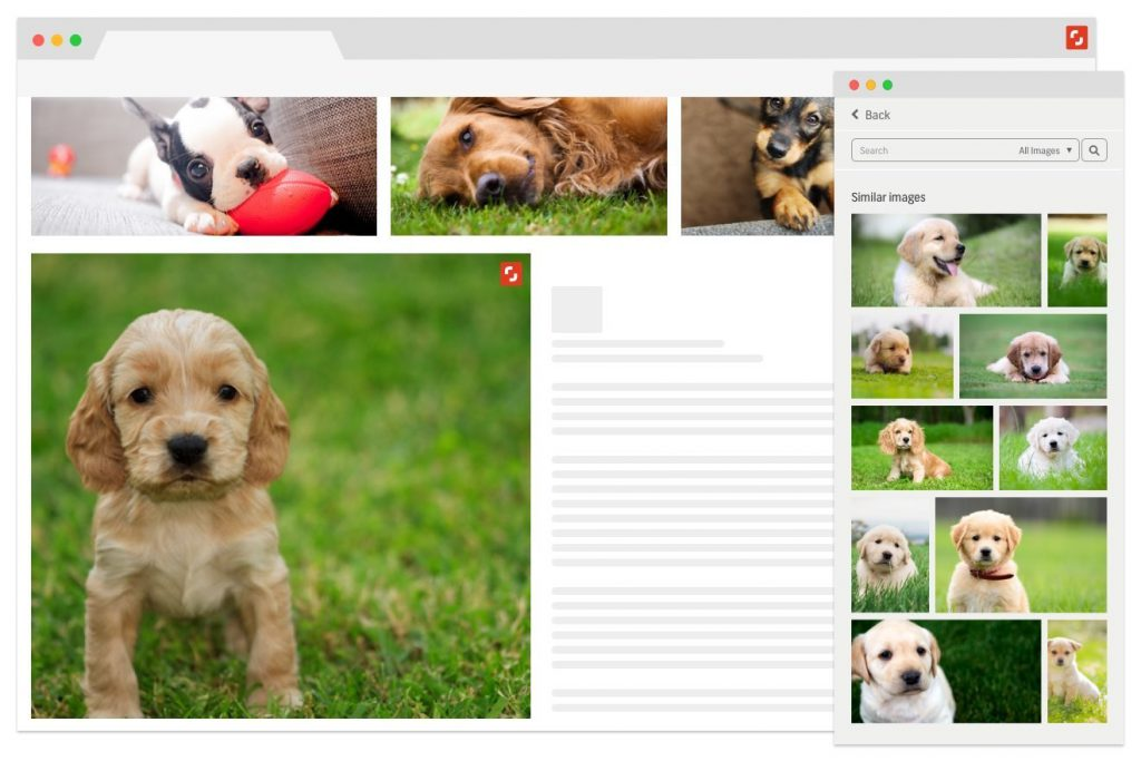 Shutterstock Launches Suite of Deep Learning-Powered Search Tools Including Reveal, a New Plugin for Google Chrome. Reveal allows users to select any image online and find a similar photo, vector or illustration within Shutterstock's collection of more than 190 million licensable and ready to use high-quality images. (PRNewsfoto/Shutterstock, Inc.)