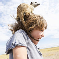 5 year old boy with Meerkat on his head, Kalahari Desert, Makgadikgadi Salt Pans, Botswana