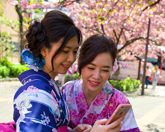 Japan, Kanto, Tokyo, Honshu island, Two women dressing kimono looking at the mobile phone, In the back cherry blossom spring in Japan SIM-478645 by Aldo Pavan