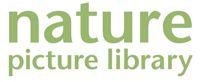 NPL_Logo_200