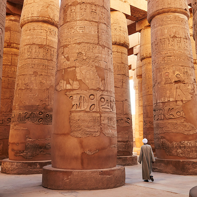 Egypt, Nile Valley, Luxor, Thebes, Temples of Karnak, Nile, Temple guardian walking through the columns of the Great Hypostyle Hall, Temple of Karnak, Luxor