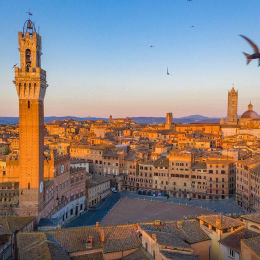 Italy, Tuscany, Siena district, Siena, Piazza del Campo, The Torre del Mangia and Piazza del Campo.